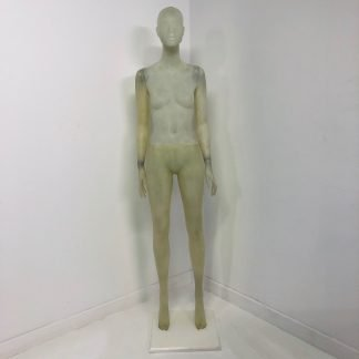 Transparent Female Mannequin